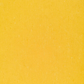 DLW Colorette Sport Linoleum - banana yellow 4,0 mm