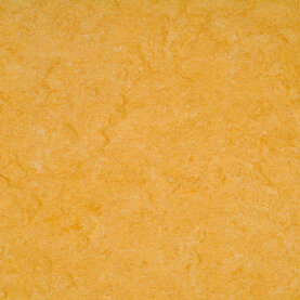 DLW Marmorette Linoleum - golden yellow