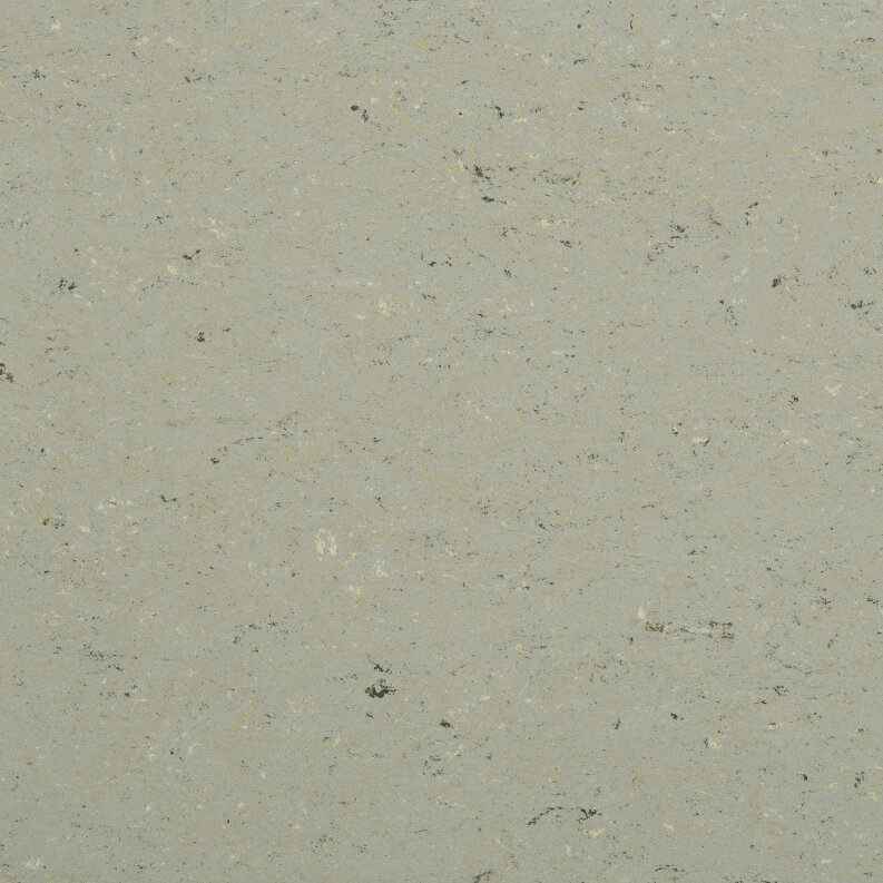 DLW Colorette Linoleum - aluminium grey LPX 2,5 mm