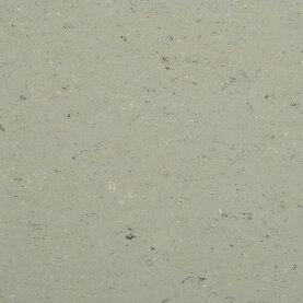 DLW Colorette Linoleum - aluminium grey