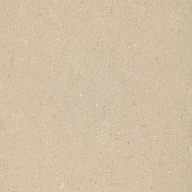 DLW Colorette Linoleum - light beige 2,5 mm