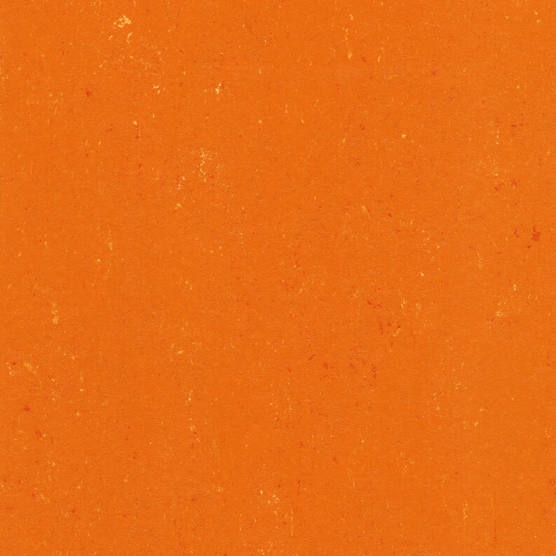 DLW Colorette Linoleum - kumquat orange LPX 2,5 mm