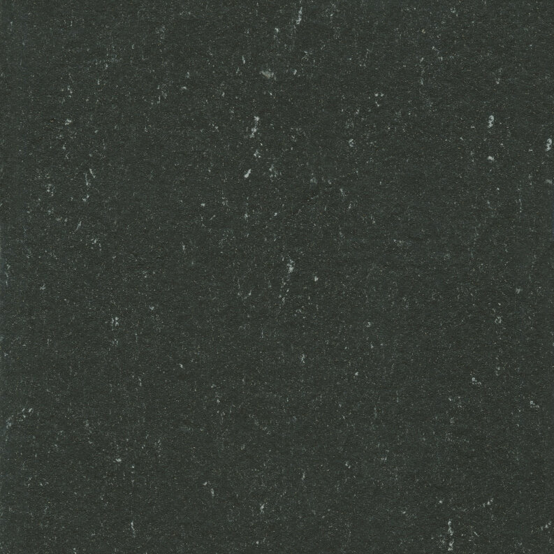 DLW Colorette Linoleum - private black LPX 2,5 mm
