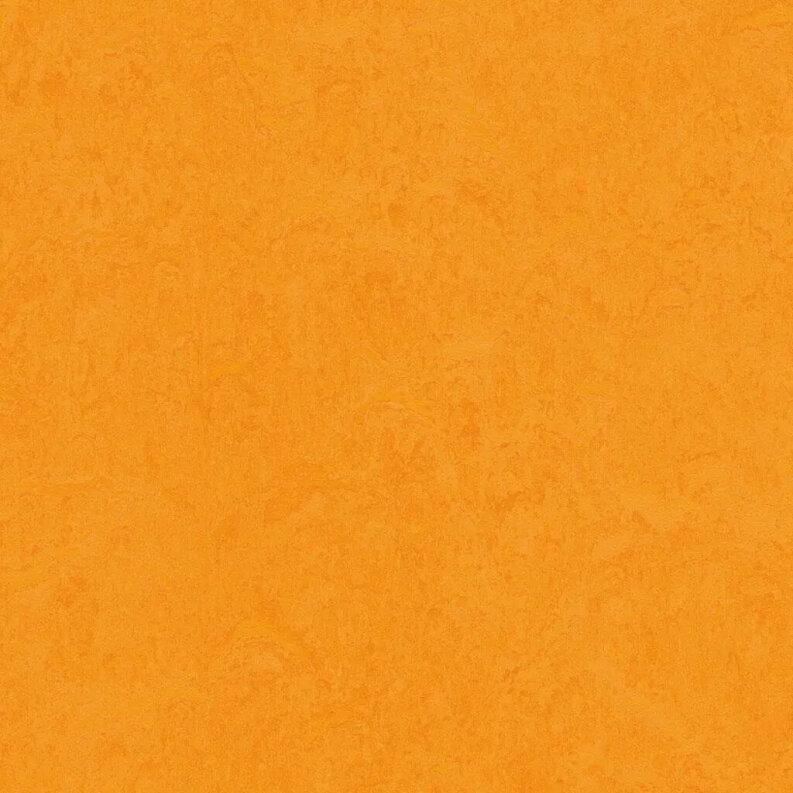 Forbo Marmoleum Fresco Linoleum - marigold 2,5 mm