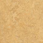 Forbo Marmoleum Real Linoleum - van gogh 2,0 mm