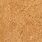 Forbo Marmoleum Real Linoleum - sahara 2,5 mm