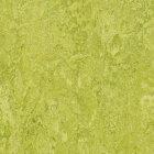 Forbo Marmoleum Real Linoleum - chartreuse 2,5 mm