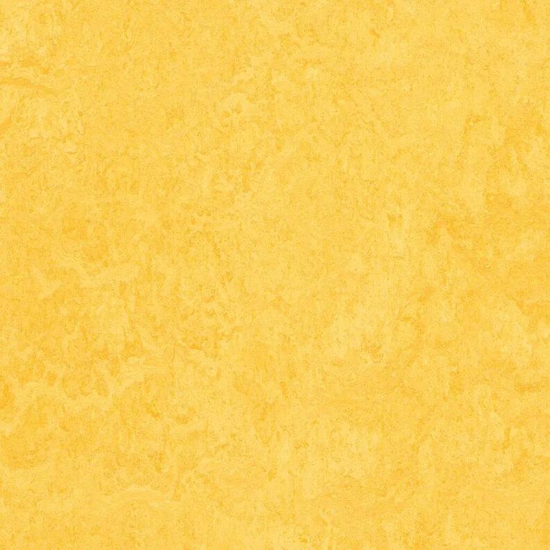Forbo Marmoleum Modular Colour Linoleum - lemon zest 50 x 50 cm Fliese
