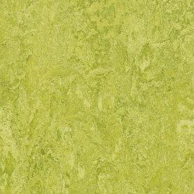 Forbo Marmoleum Real Linoleum - chartreuse
