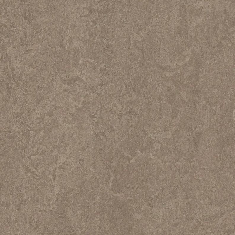 Forbo Marmoleum Fresco Linoleum - shrike