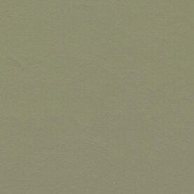 Forbo Marmoleum Walton Linoleum - rosemary green 2,5 mm