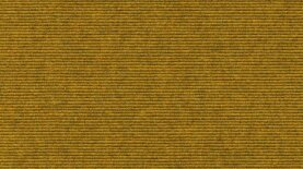 Sockelleisten Tretford 560 Curry 500 x 6 cm