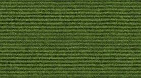 Sockelleisten Tretford 569 Moos 500 x 6 cm