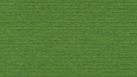 Sockelleisten Tretford 580 Apfel 500 x 6 cm