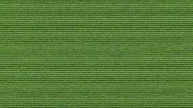 Sockelleisten Tretford 580 Apfel 1000 x 6 cm