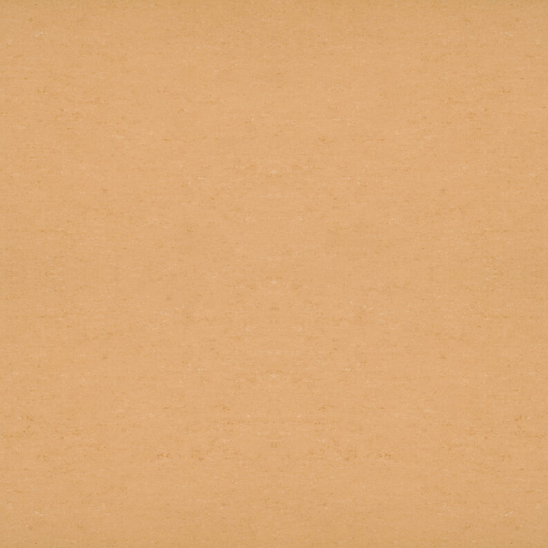 DLW Colorette Linoleum - straw beige LPX 2,5 mm