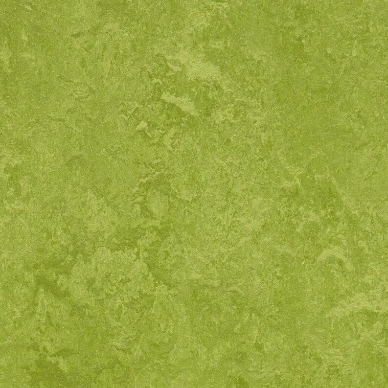 Forbo Marmoleum Fresco Linoleum - green 2.5 mm