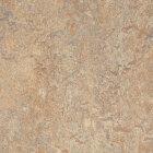 Forbo Marmoleum Modular Marble Linoleum - donkey island 50 x 50 cm Fliese