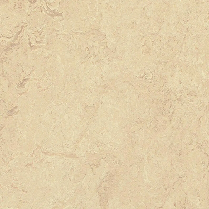 Forbo Marmoleum Modular Marble Linoleum - calico 50 x 50 cm Fliese