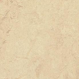 Forbo Marmoleum Modular Marble Linoleum - calico 50 x 50...