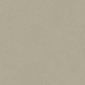Tarkett Style Emme Xf² Linoleum - Cenere 2,5 mm