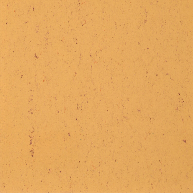 DLW Colorette Linoleum - sand yellow LPX 2,5 mm