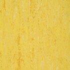 DLW Flooring Linodur Sport Linoleum - straw yellow 4,0 mm