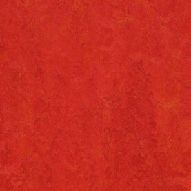 Forbo Marmoleum Modular Colour Linoleum - scarlet 50 x 50...