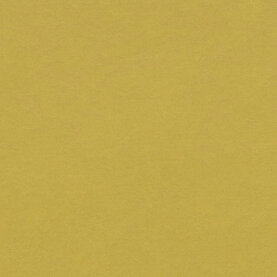 Forbo Marmoleum Modular Colour Linoleum - yellow moss 50...