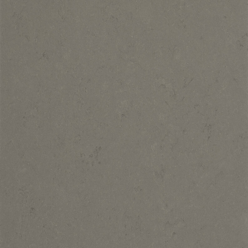 DLW Lino Art Urban Linoleum - bold grey LPX 2,5 mm
