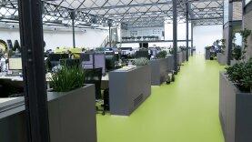 DLW Colorette Linoleum - spicy green