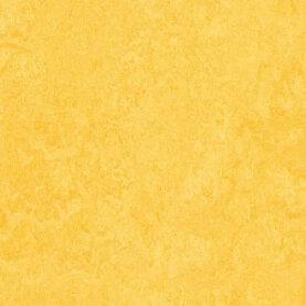 Forbo Marmoleum Fresco Linoleum - lemon zest
