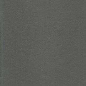 DLW Uni Walton Linoleum - architects grey