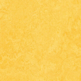 Forbo Marmoleum Click - lemon zest 300 x 300 mm