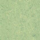 DLW Marmorette Linoleum - antique green