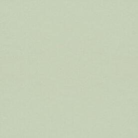 Forbo Tischlinoleum Desktop - pistachio