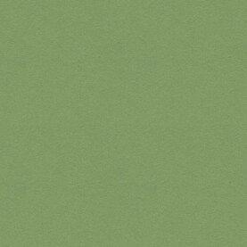 Forbo Pinnwand Linoleum - baby lettuce